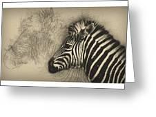 Zebra Study Greeting Card