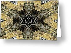 Zebra Vi Greeting Card