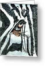 Zebras Eye - Colored Pencil Art  Greeting Card