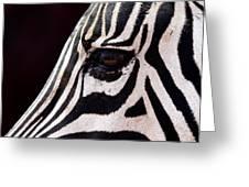 Zebras Eye Greeting Card