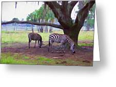 Zebras Under Oaks Greeting Card
