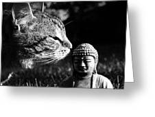Zen Cat Black And White- Photography By Linda Woods Greeting Card