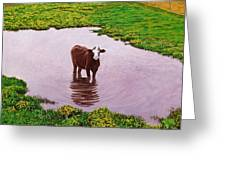 Zen Cow Greeting Card