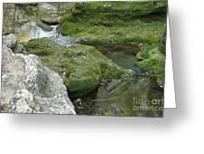 Zen Creek Rocky Scenery Greeting Card