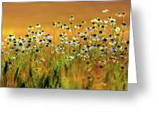 Zest For Life Greeting Card