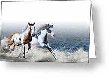 Ziggy's And Annie's Beach Run Greeting Card