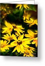 Zinnia Flower Greeting Card
