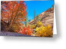 Zion Autumn Colors Greeting Card