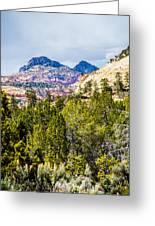 Zion Canyon National Park Utah Greeting Card