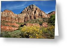 Zion Canyon - Navajo Sandstone Greeting Card