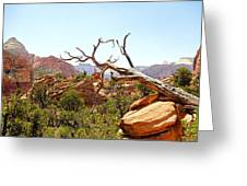 Zion Hike 1 View 4 Greeting Card