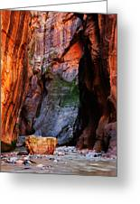 Zion Narrows With Boulder Greeting Card