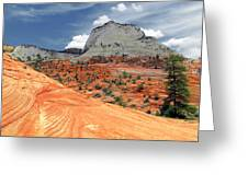 Zion National Park As A Storm Rolls In Greeting Card by Christine Till