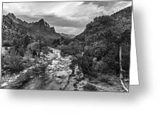 Zion National Park In Black And White  Greeting Card