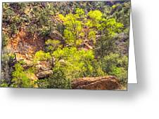 Zion National Park Small Tributary Of The Virgin River Greeting Card