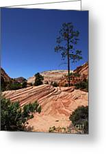 Zion Park Colors And Texture Greeting Card