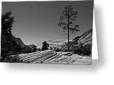 Zion Park Geology Texture Greeting Card
