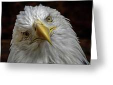 Zombie Eagle Look Greeting Card