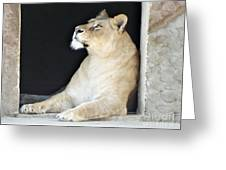 The Queen Of Animals Greeting Card