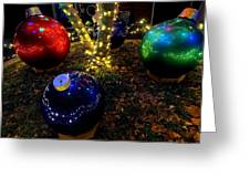 Zoo Lights Ornaments Greeting Card