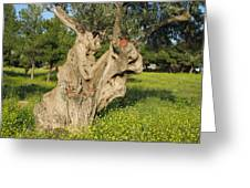 Zoomorphical Olive Greeting Card
