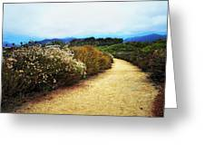 Zuma Beach Pathway Greeting Card