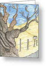 Zuniga Ranch Almond Tree Greeting Card