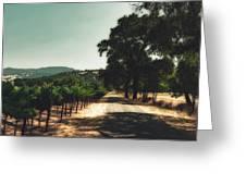 A Drive Through Napa Valley Greeting Card