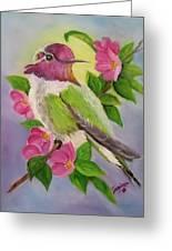 Anna's Hummingbird Greeting Card