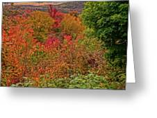 Autumn Beginnings In New Hampshire Greeting Card by Dan Sproul