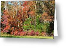 Autumn Colours In Great Smoky Mountains National Park Greeting Card