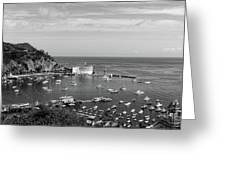 Avalon Harbor - Catalina Island, California Greeting Card