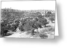 Bethlehem 1886 Greeting Card