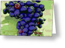Blue Grape Bunches 6 Greeting Card