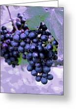 Blue Grape Bunches 7 Greeting Card