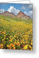 Boundary Cone Butte Greeting Card