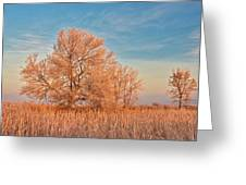 Canada, Manitoba, Lorette Greeting Card