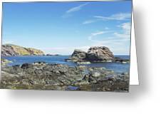 cliffs and coast at St. Abbs, Berwickshire Greeting Card