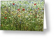 Flower Meadow Greeting Card