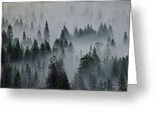 Foggy Yosemite Greeting Card