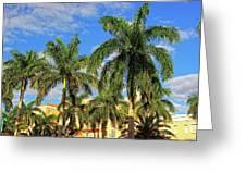 Glorious Palms Greeting Card