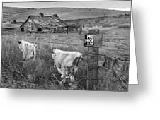 Palouse Barn 9901 Greeting Card