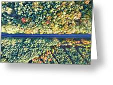 Road Through Colorful Autumn Forest Greeting Card