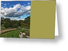 Sagamore Hill Greeting Card
