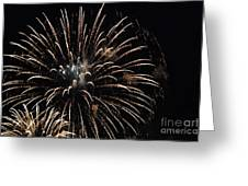 Saint Louis Riverfront 4th Of July 2018 Greeting Card