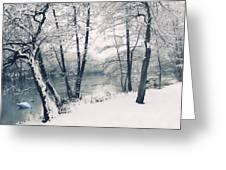 Snow Pond Greeting Card