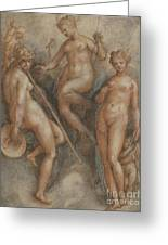 Three Goddesses  Minerva, Juno And Venus Greeting Card