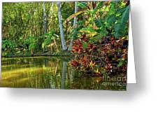 Tropical Corner Greeting Card