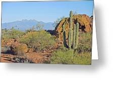 View To Four Peaks  Greeting Card