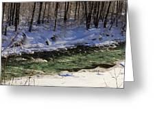 Winter Stream Near Hope On The Kenai Peninsula Alaska Greeting Card